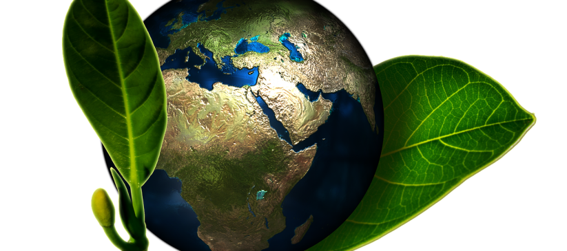 Planet Earth encompassed by leaves